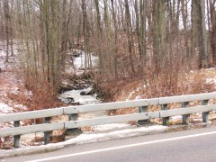 LOCAL CREEKS AND STREAMS LEVELS APPROACH THEIR BANKS IN WHITNEY POINT AND SURROUNDING AREAS IN THE SOUTHERN TIER