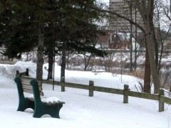 Too Cold to Sit Out on a Park Bench