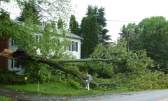 Tioga County Damage
