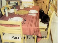 Where's the Tuna