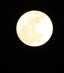 Super Moon Over Greene, NY