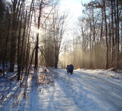 Winter hike in Pharsalia Chenango County