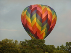Balloons Land in Conklin NY