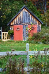 Potting Shed In It's Fall Array!
