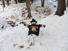 My Steeler snowman!!!