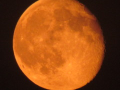 Bright orange moon