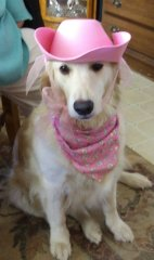 Happy Howl-o-ween from Mya the cowgirl
