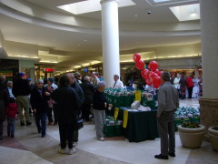 Healthy Heart 2009 at Oakdale Mall