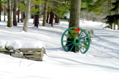Wagon Wheel in Snow
