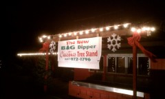 The Big Dipper Christmas Tree Stand