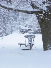 old man winter's rocking chair