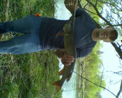 30 inch Northern Pike
