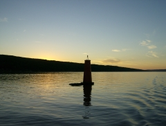 Cayuga Lake Dinner Cruise