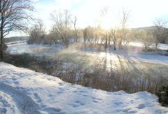 Frosty Morning on the Charlotte Creek
