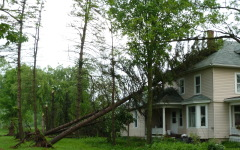 More storm damage pictures