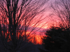 Colorful Sunrise In March