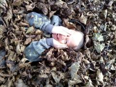 Frolicking in the leaves