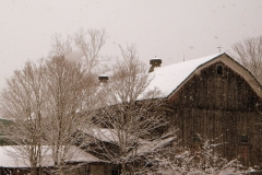 Wintery day at the Barn