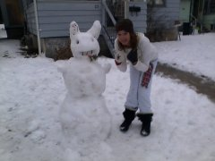 the new snow rabbit