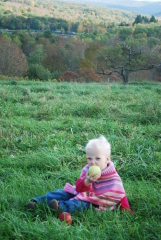 Apple Picking at Apple Hills