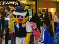 Sports Mascots at Family Fitness Day