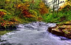 The Pine Creek in Fall!