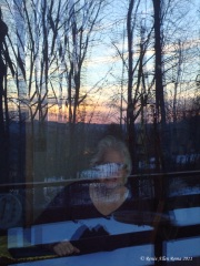 The sunset, bird feeder and me