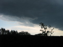 Storm Front Over the Southern Tier