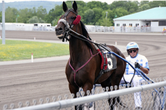 Sunday races at Tioga Downs