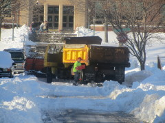 City Worker Digging out