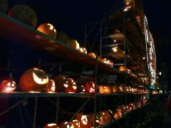 12th Annual Norwich Pumpkin Festival