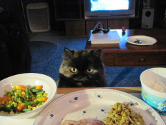 What's for dinner??